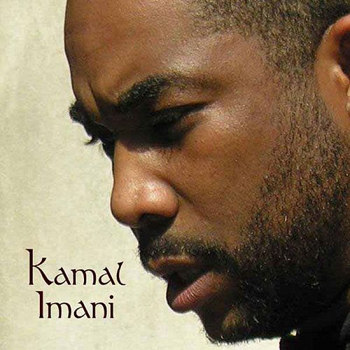 They Don't Know What We Came Through by Kamal Imani