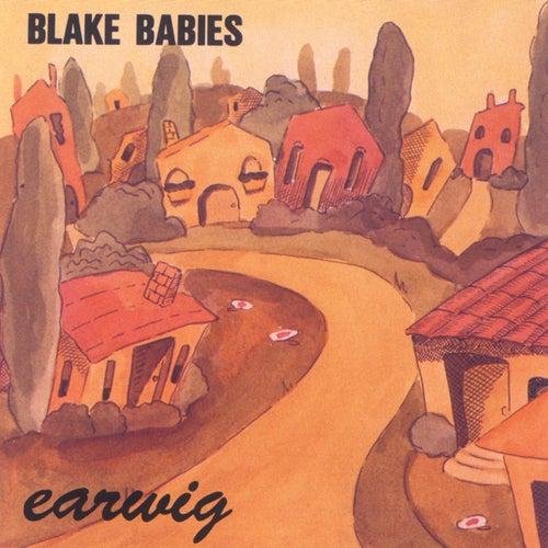 Earwig by Blake Babies