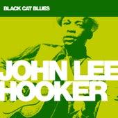 Black Cat Blues von John Lee Hooker