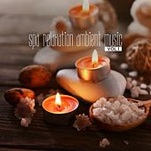 Spa Relaxation Ambient Music, Vol. 1 by Various Artists