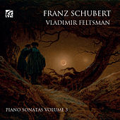 Schubert: Piano Sonatas, Vol. 3 by Vladimir Feltsman