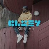 U Sure Do by Bluey