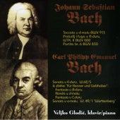 Johann Sebastian Bach, Carl Philipp Emanuel Bach by Veljko Glodić