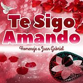 Te Sigo Amando - Homenaje a Juan Gabriel by Various Artists