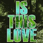 Is This Love (Dance Mix Instrumental) by Kph