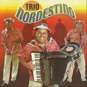 Meu Eterno Xodó by Trio Nordestino