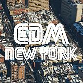 EDM  New York by Various Artists