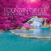 Fountain of Life: Chillout Tunes by Various Artists