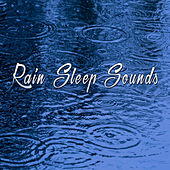 Rain Sleep Sounds by Various Artists