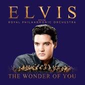A Big Hunk o' Love von Elvis Presley