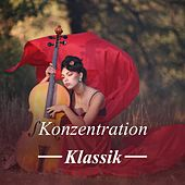 Konzentration: Klassik by Various Artists
