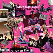 Dance or Die by Birdy Nam Nam