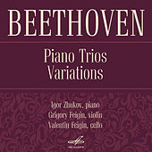 Beethoven: Piano Trios by Valentin Feigin