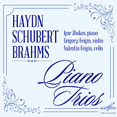 Hydn, Schubert, Brahms: Piano Trios by Valentin Feigin