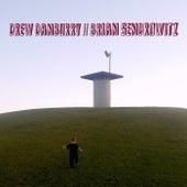 Drew Danburry / Brian Sendrowitz by Various Artists