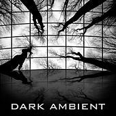Dark Ambient by Christopher Franke
