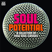 Soul Potential by Various Artists