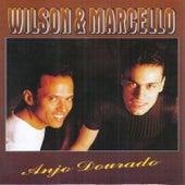 Anjo Dourado by Wilson