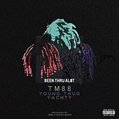 Been Thru a Lot - Single by TM88