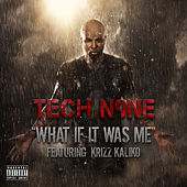 What If It Was Me von Tech N9ne