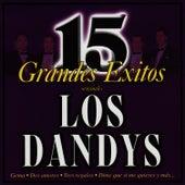 15 Grandes Éxitos by Los Dandys