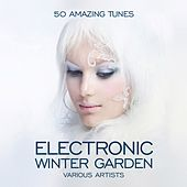 Electronic Winter Garden (50 Amazing Tunes) by Various Artists