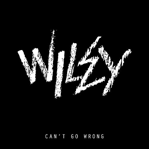 Can't Go Wrong by Wiley