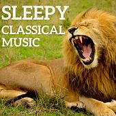 Sleepy Classical Music by Various Artists