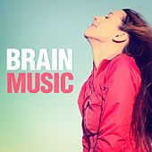 Brain Music by Various Artists