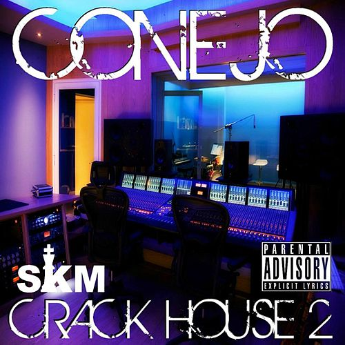 Crack House 2 by Conejo