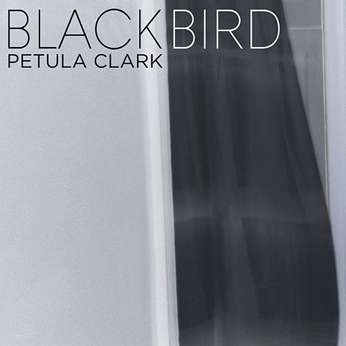 Blackbird by Petula Clark