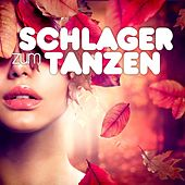 Schlager zum Tanzen by Various Artists