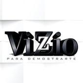 Para Demostrarte by Vizzio
