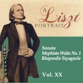 A Liszt Portrait, Vol. XX by Lazar Berman