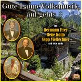 Gute Laune Volksmusik, auf geht's by Various Artists