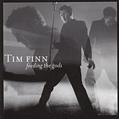 Feeding the Gods by Tim Finn
