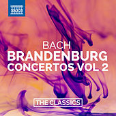 Bach: Brandenburg Concertos Nos. 4-6 by Various Artists