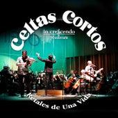 Retales de una Vida by Celtas Cortos