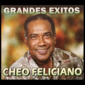 Grandes Exitos by Cheo Feliciano