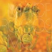 Macrocosms by Machinefabriek