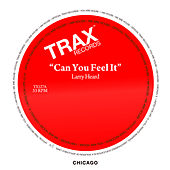 Can You Feel It by Larry Heard