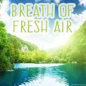 Breath of Fresh Air by Various Artists