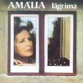 Lágrima by Amalia Rodrigues