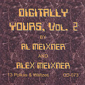 Digitally Yours, Vol.2 by Various Artists