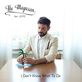 Kitsuné: I Don't Know What to Do (Bonus Track Version) by The Magician