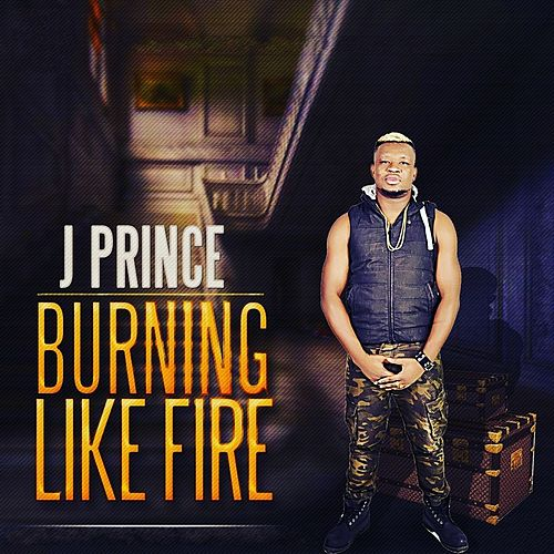 Burning Like Fire by J. Prince