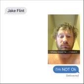I'm Not Ok by Jake Flint