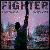 Fighter (feat. Goody Gunz) by David Correy