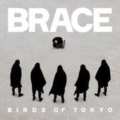 Brace by Birds Of Tokyo