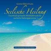 Seelische Heilung: Spirituelle Wohlfühlmusik by Gomer Edwin Evans